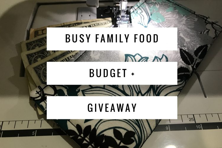 Busy Family Food Budget + Giveaway!